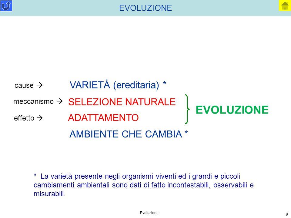 EVOLUZIONE VARIETÀ (ereditaria) * SELEZIONE NATURALE ADATTAMENTO