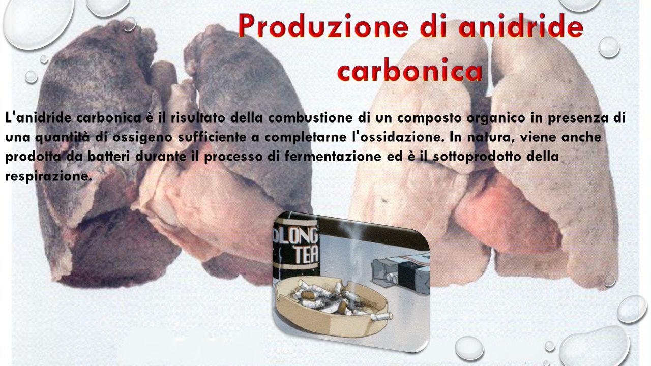 Produzione di anidride carbonica