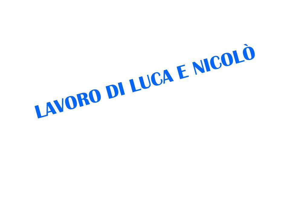 LAVORO DI LUCA E NICOLÒ