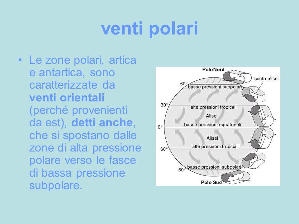 venti polari