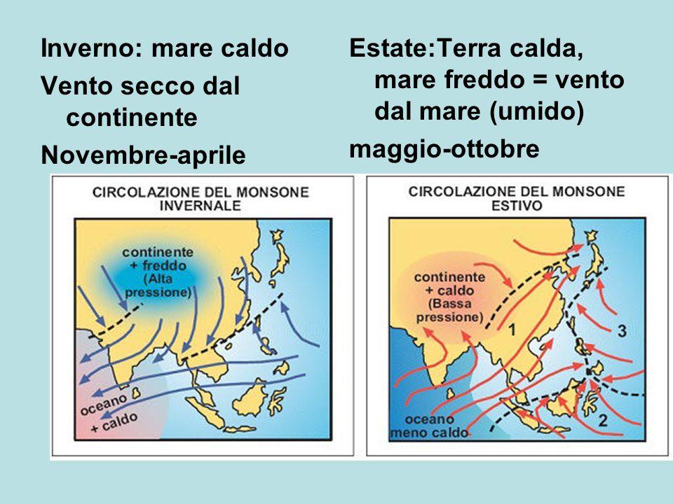 Inverno: mare caldo Vento secco dal continente. Novembre-aprile. Estate:Terra calda, mare freddo = vento dal mare (umido)