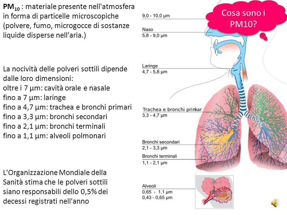 PM10 : materiale presente nell atmosfera in forma di particelle microscopiche (polvere, fumo, microgocce di sostanze liquide disperse nell aria.)