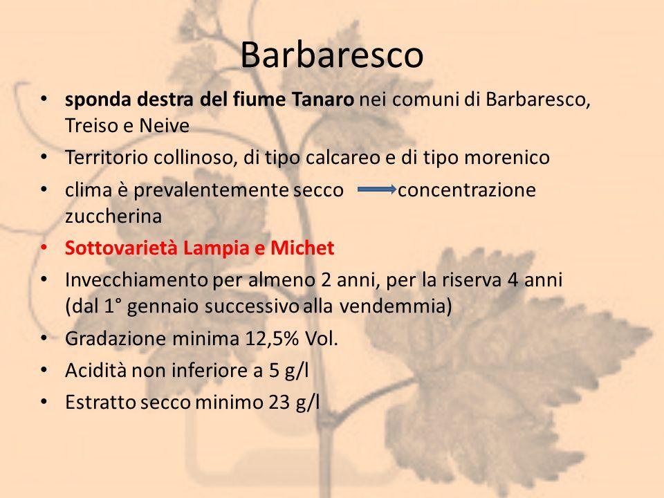 Barbaresco sponda destra del fiume Tanaro nei comuni di Barbaresco, Treiso e Neive. Territorio collinoso, di tipo calcareo e di tipo morenico.