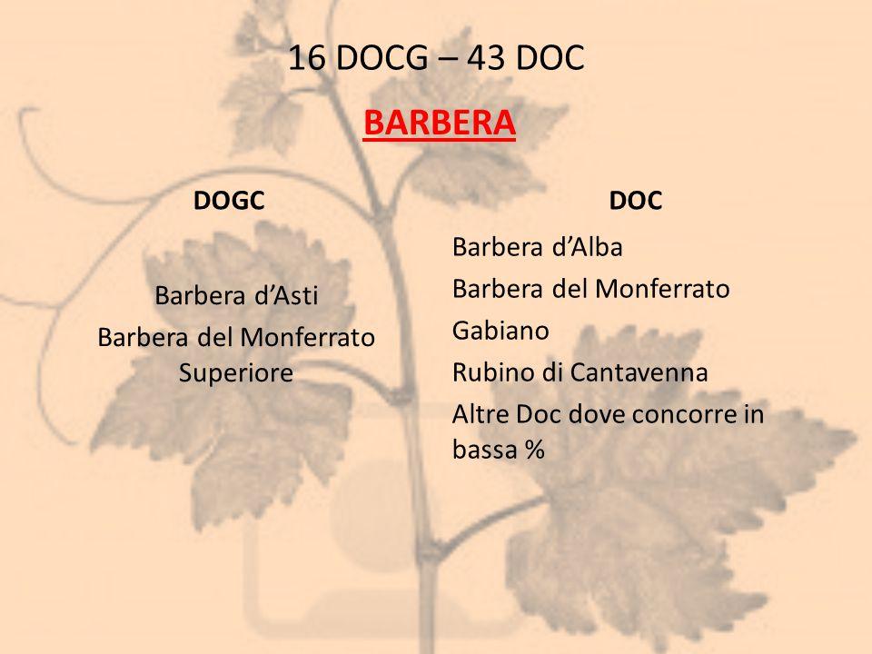 Barbera d'Asti Barbera del Monferrato Superiore
