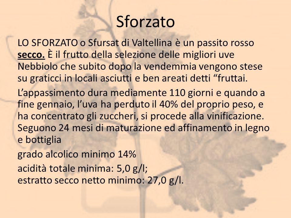 Sforzato