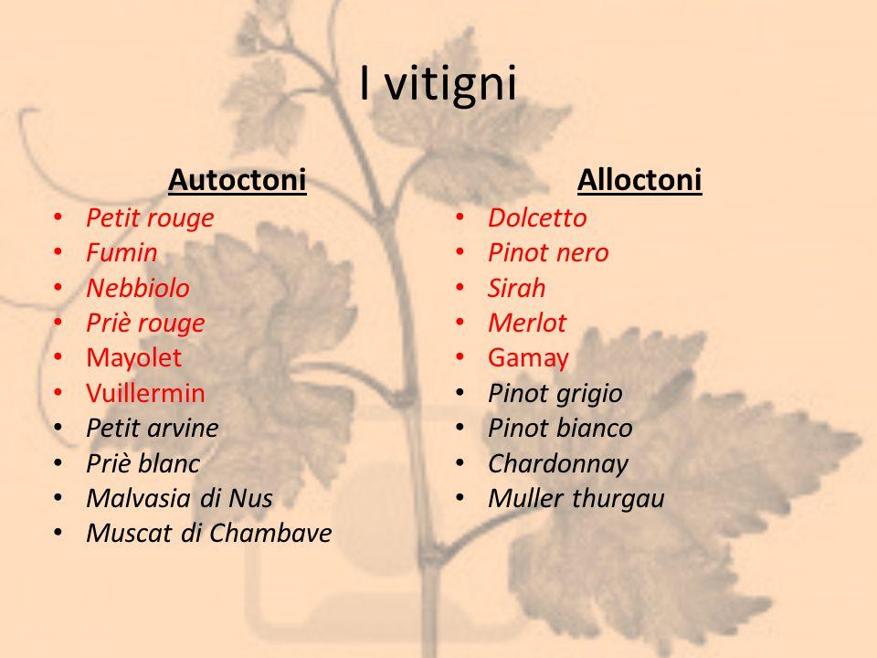 I vitigni Autoctoni Alloctoni Petit rouge Fumin Nebbiolo Priè rouge