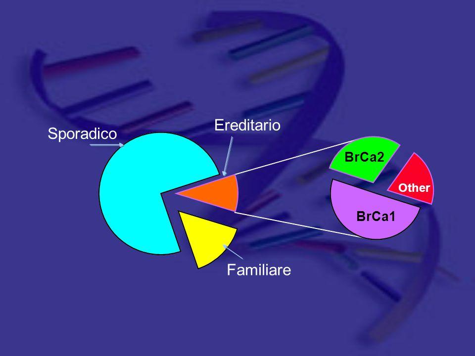 Ereditario Sporadico BrCa2 Other BrCa1 Familiare