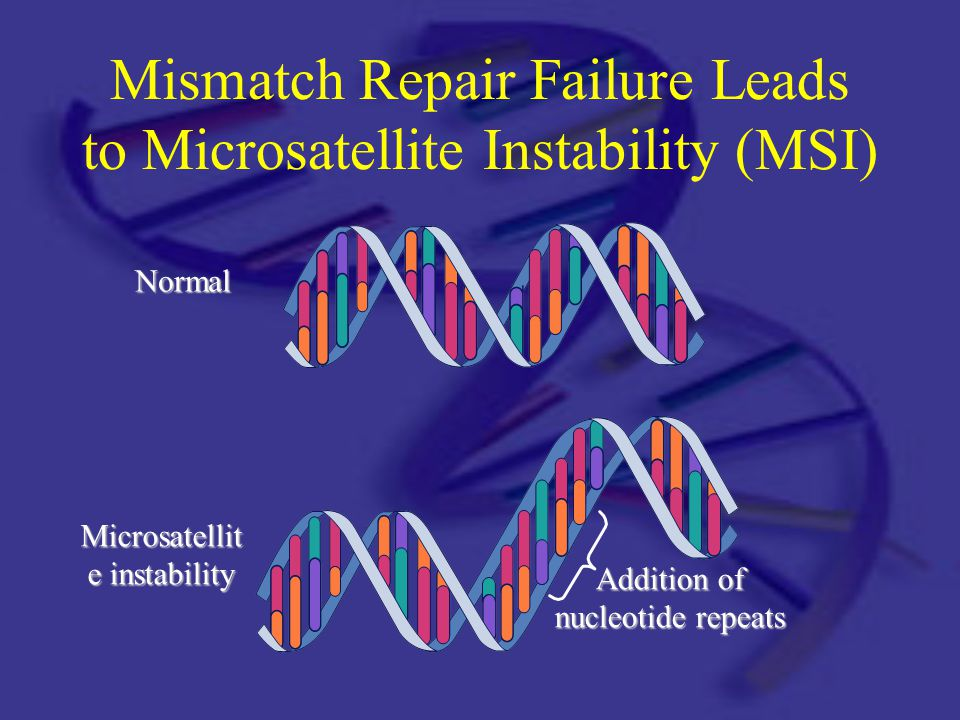 Mismatch Repair Failure Leads to Microsatellite Instability (MSI)