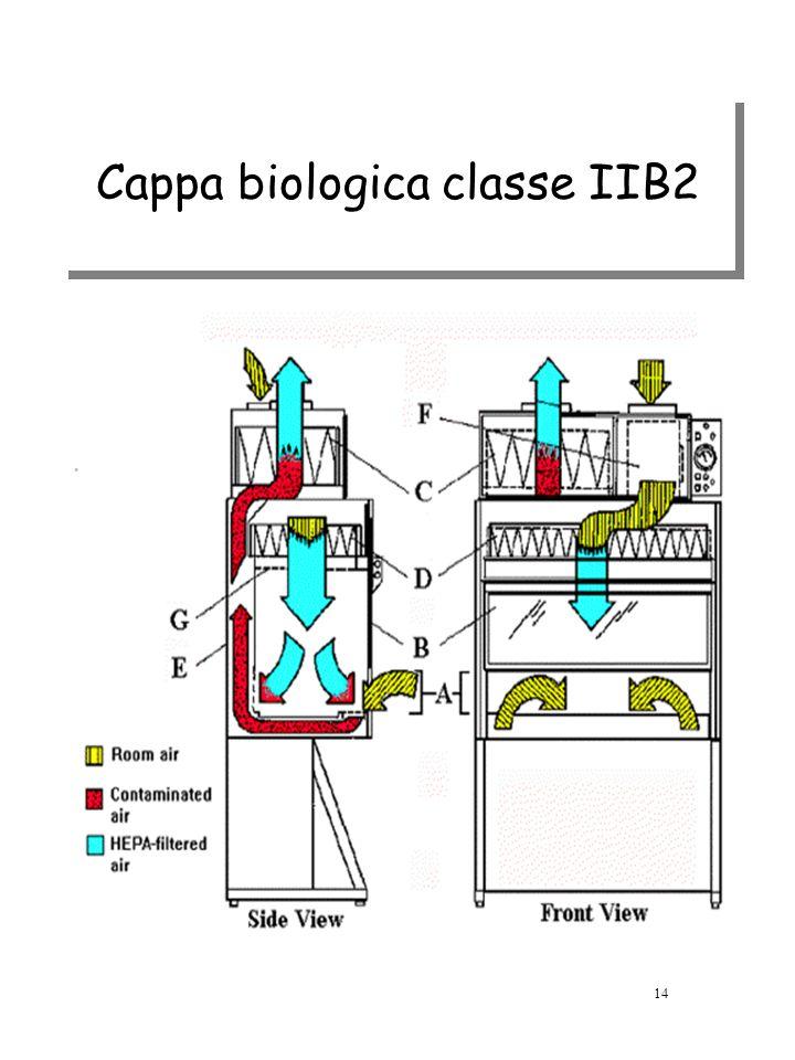 Cappa biologica classe IIB2