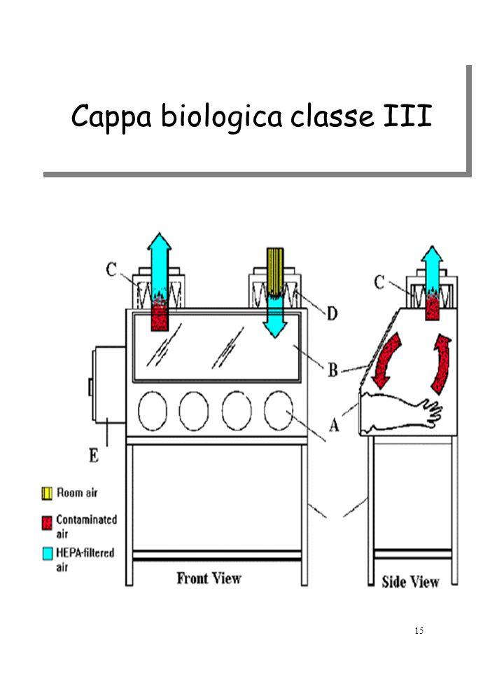Cappa biologica classe III