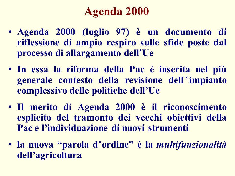 Agenda 2000 Agenda 2000 (luglio 97) è un documento di riflessione di ampio respiro sulle sfide poste dal processo di allargamento dell'Ue.