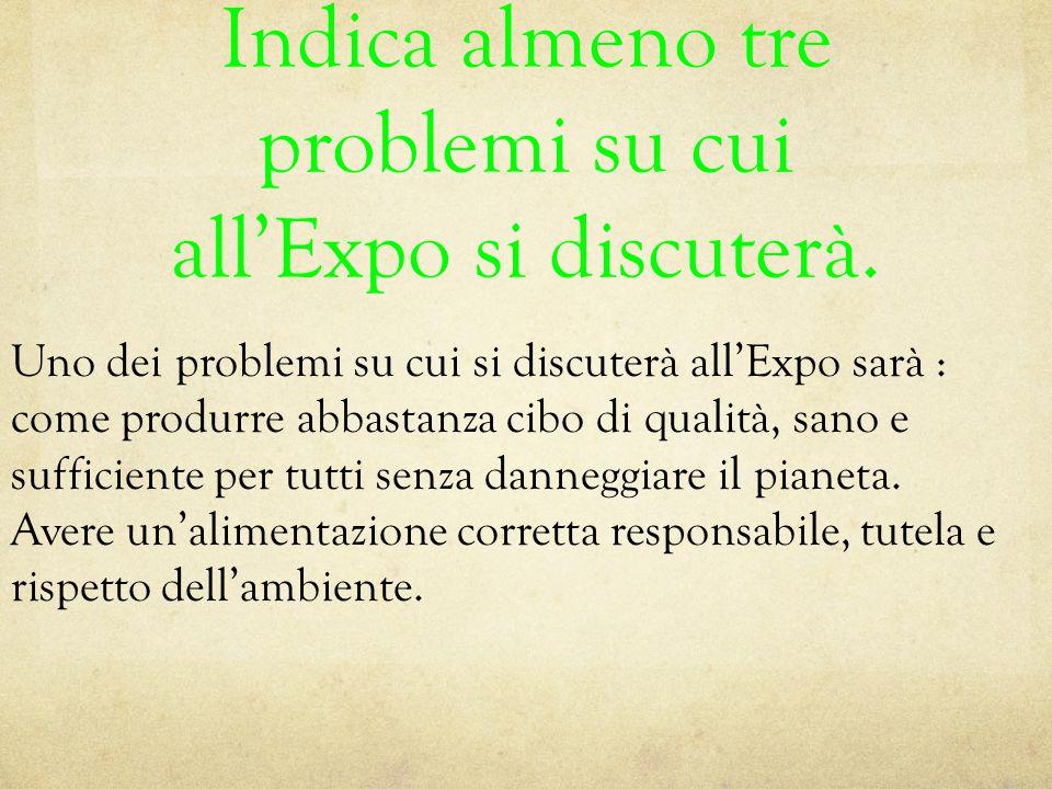 Indica almeno tre problemi su cui all'Expo si discuterà.