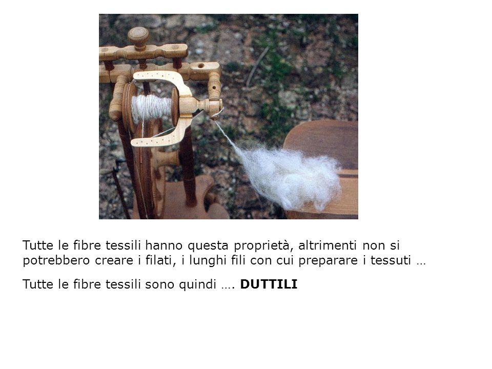 Tutte le fibre tessili hanno questa proprietà, altrimenti non si potrebbero creare i filati, i lunghi fili con cui preparare i tessuti …