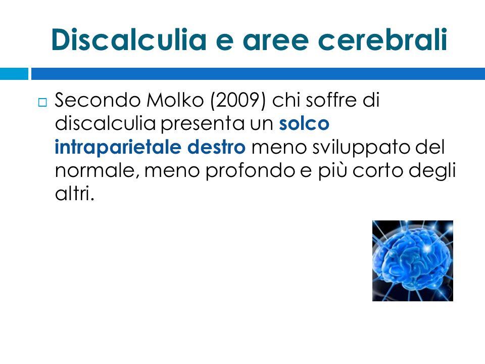 Discalculia e aree cerebrali