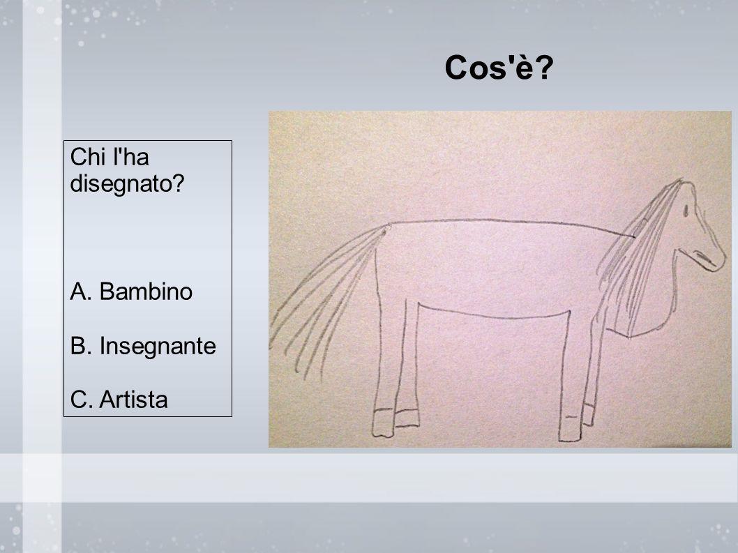 Cos è Chi l ha disegnato A. Bambino B. Insegnante C. Artista