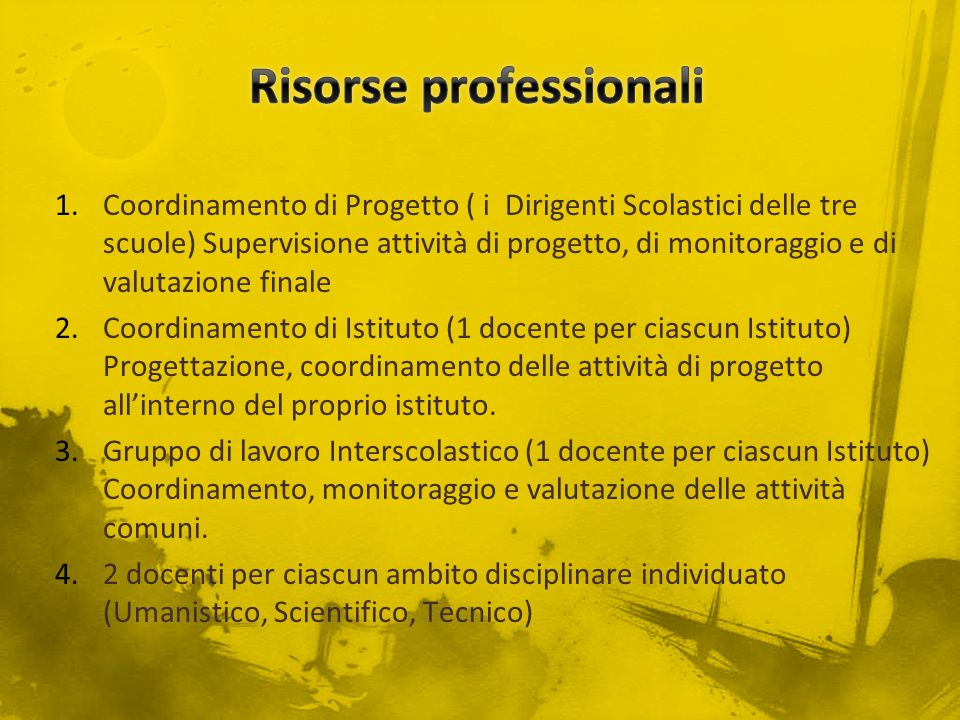 Risorse professionali