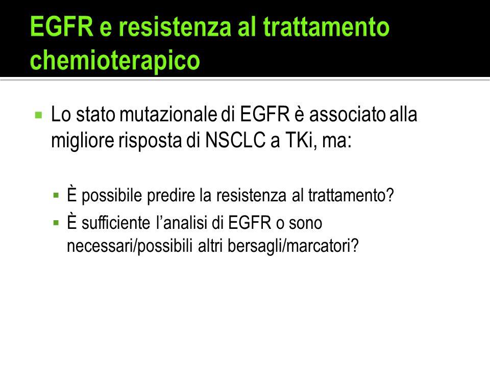 EGFR e resistenza al trattamento chemioterapico