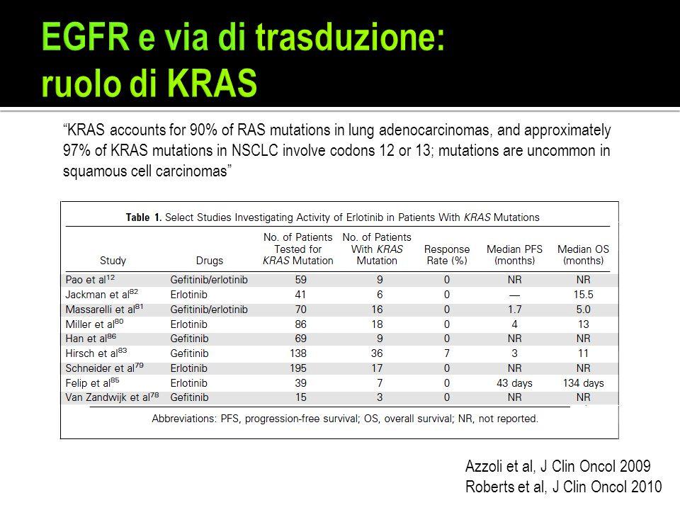 EGFR e via di trasduzione: ruolo di KRAS
