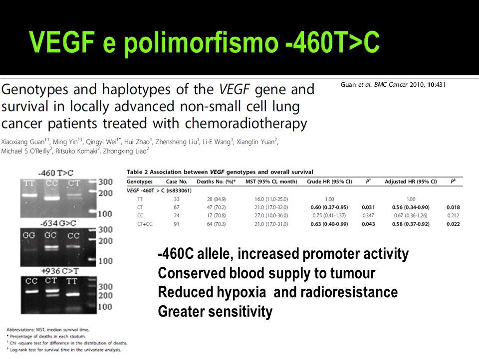 VEGF e polimorfismo -460T>C