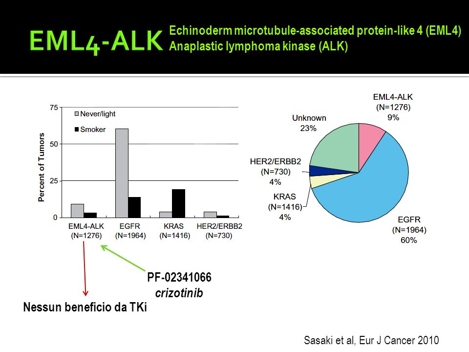 EML4-ALK Echinoderm microtubule-associated protein-like 4 (EML4)