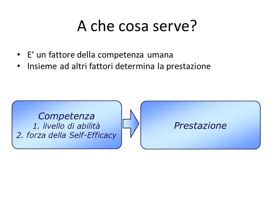 2. forza della Self-Efficacy