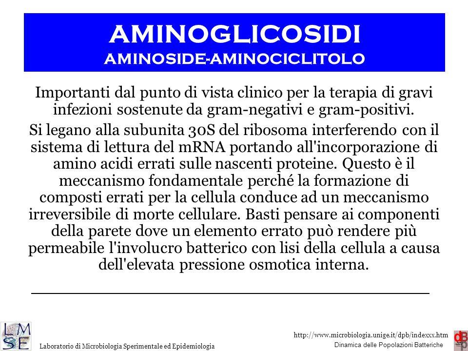 AMINOGLICOSIDI AMINOSIDE-AMINOCICLITOLO