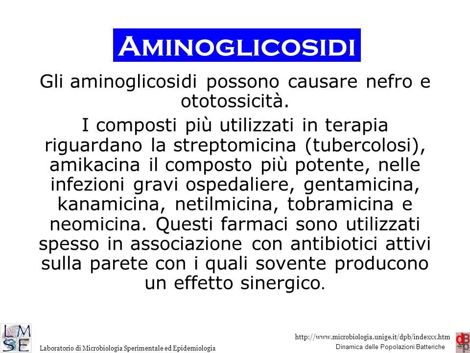 Gli aminoglicosidi possono causare nefro e ototossicità.