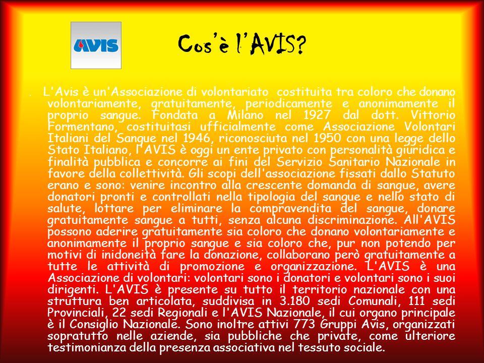 Cos'è l'AVIS