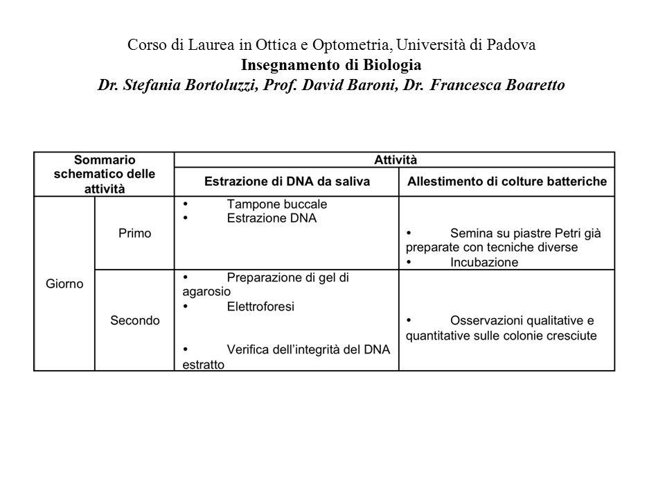 Corso di Laurea in Ottica e Optometria, Università di Padova