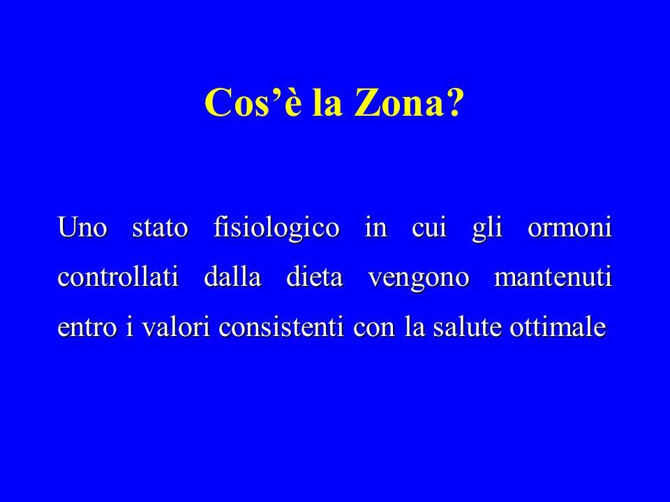 Cos'è la Zona.