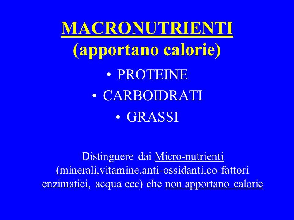 MACRONUTRIENTI (apportano calorie)