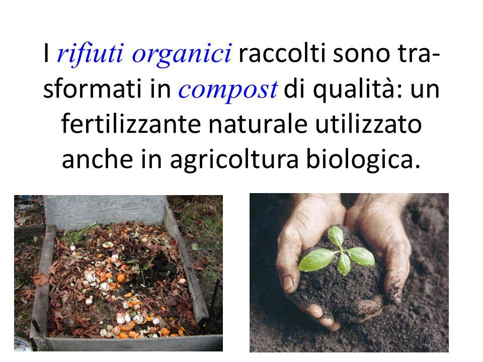 I rifiuti organici raccolti sono tra- sformati in compost di qualità: un fertilizzante naturale utilizzato anche in agricoltura biologica.
