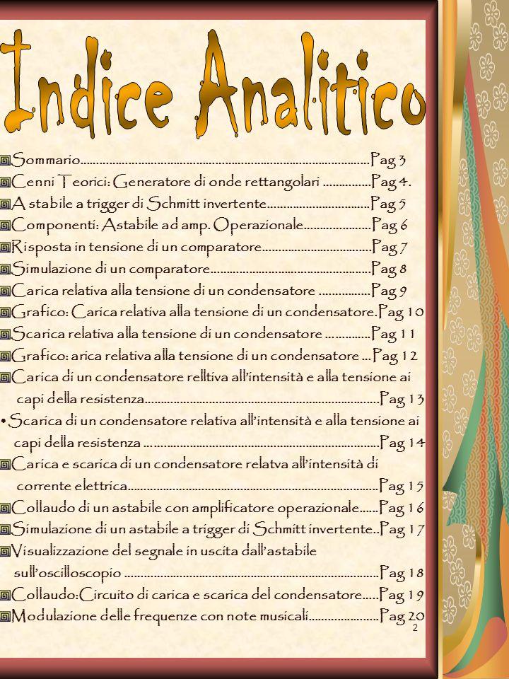 Indice Analitico Sommario………………………………………………………………………………Pag 3