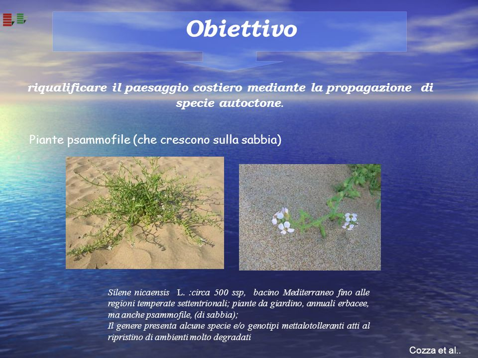 Obiettivo riqualificare il paesaggio costiero mediante la propagazione di specie autoctone. Piante psammofile (che crescono sulla sabbia)