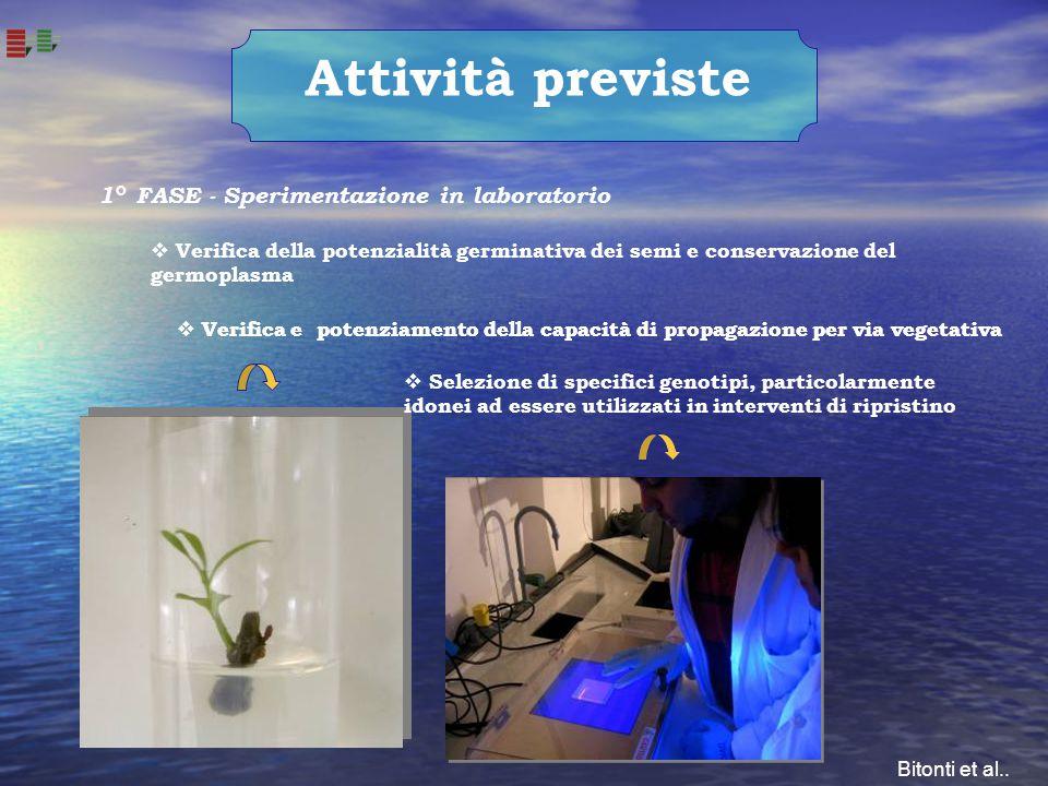 Attività previste 1° FASE - Sperimentazione in laboratorio