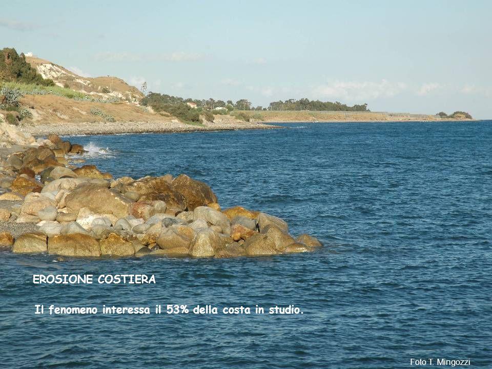 Il fenomeno interessa il 53% della costa in studio. EROSIONE COSTIERA