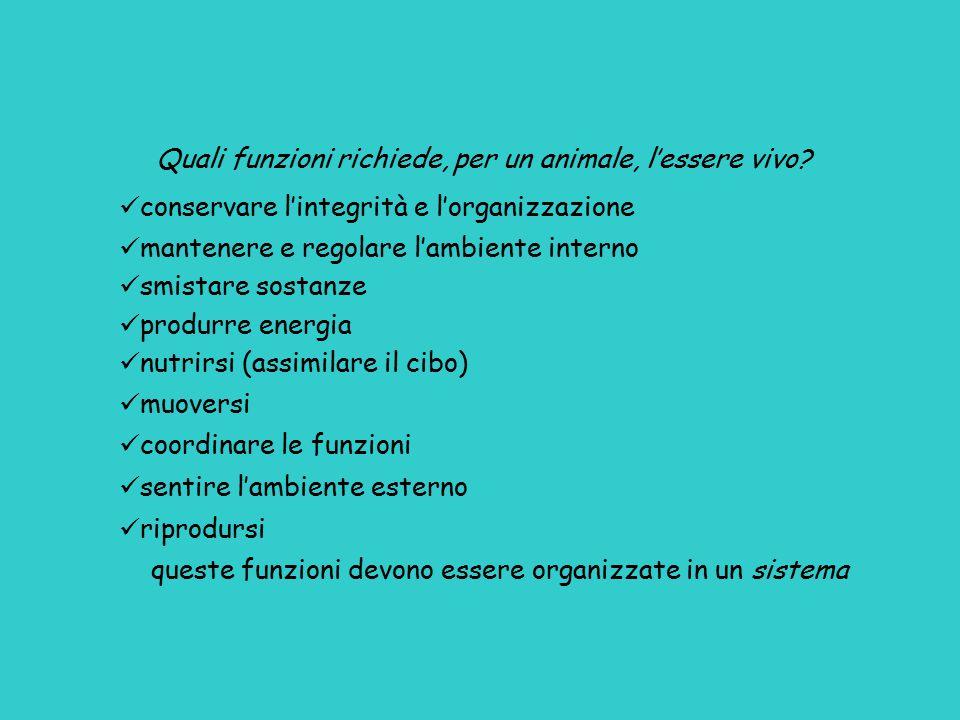 Quali funzioni richiede, per un animale, l'essere vivo