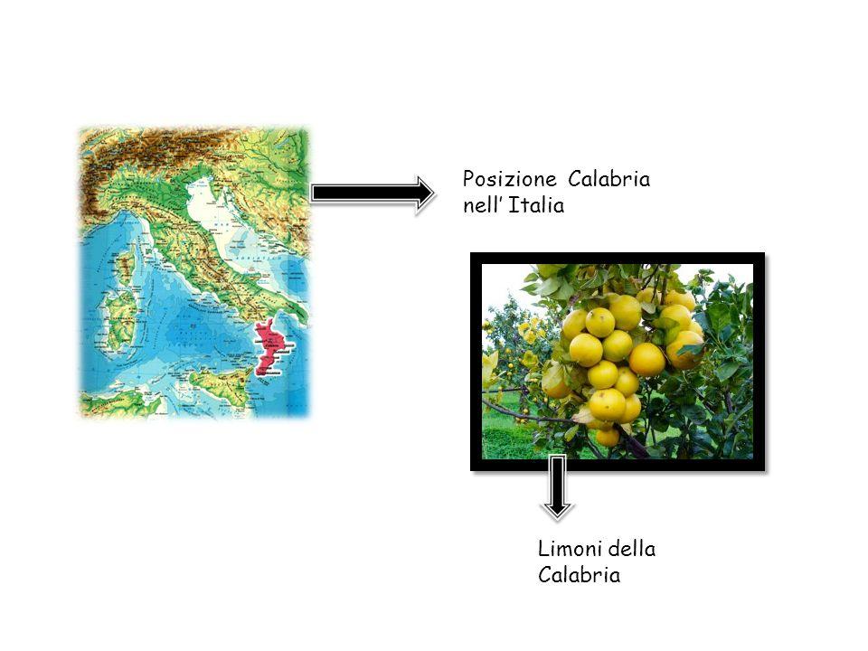 Posizione Calabria nell' Italia