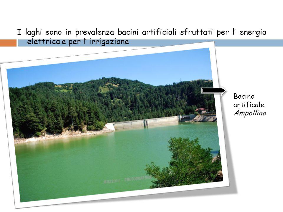 I laghi sono in prevalenza bacini artificiali sfruttati per l' energia elettrica e per l' irrigazione