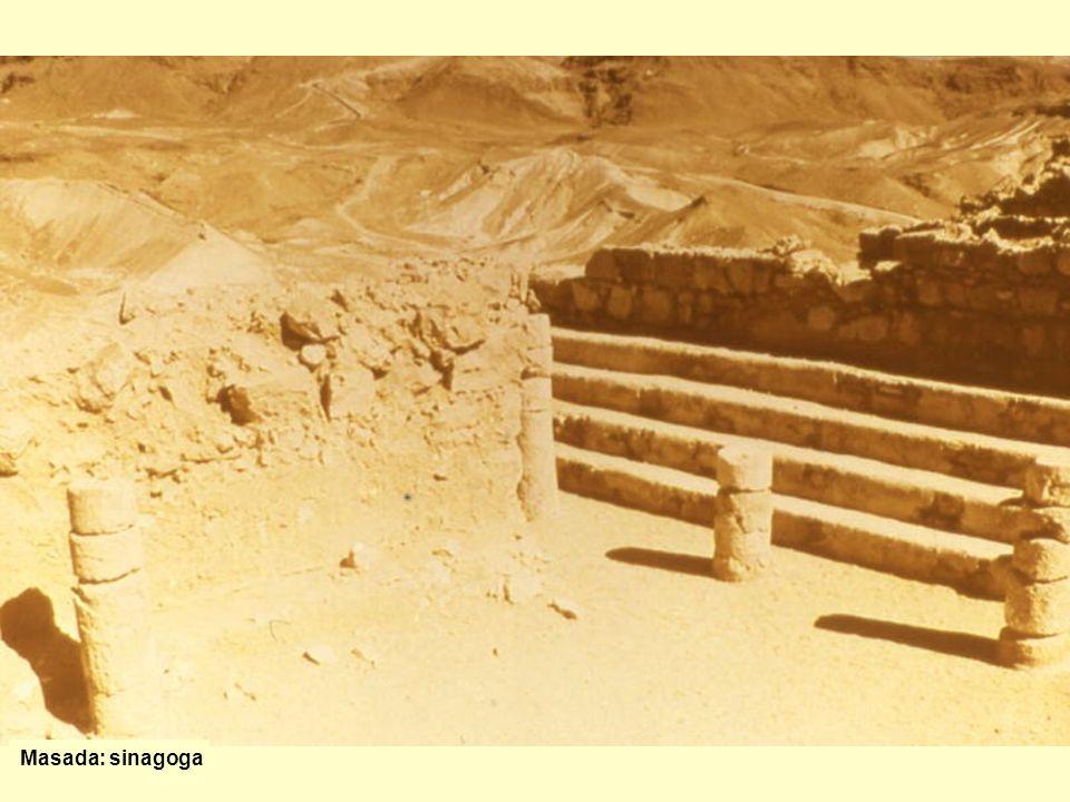 Masada: sinagoga