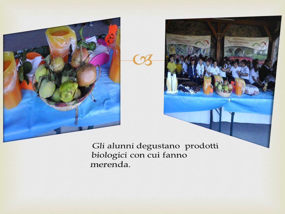 Gli alunni degustano prodotti biologici con cui fanno merenda.