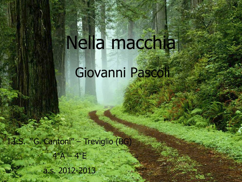 I.I.S. G. Cantoni – Treviglio (BG)
