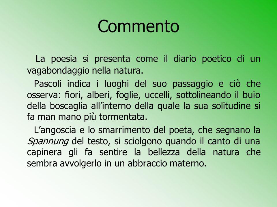 Commento La poesia si presenta come il diario poetico di un vagabondaggio nella natura.