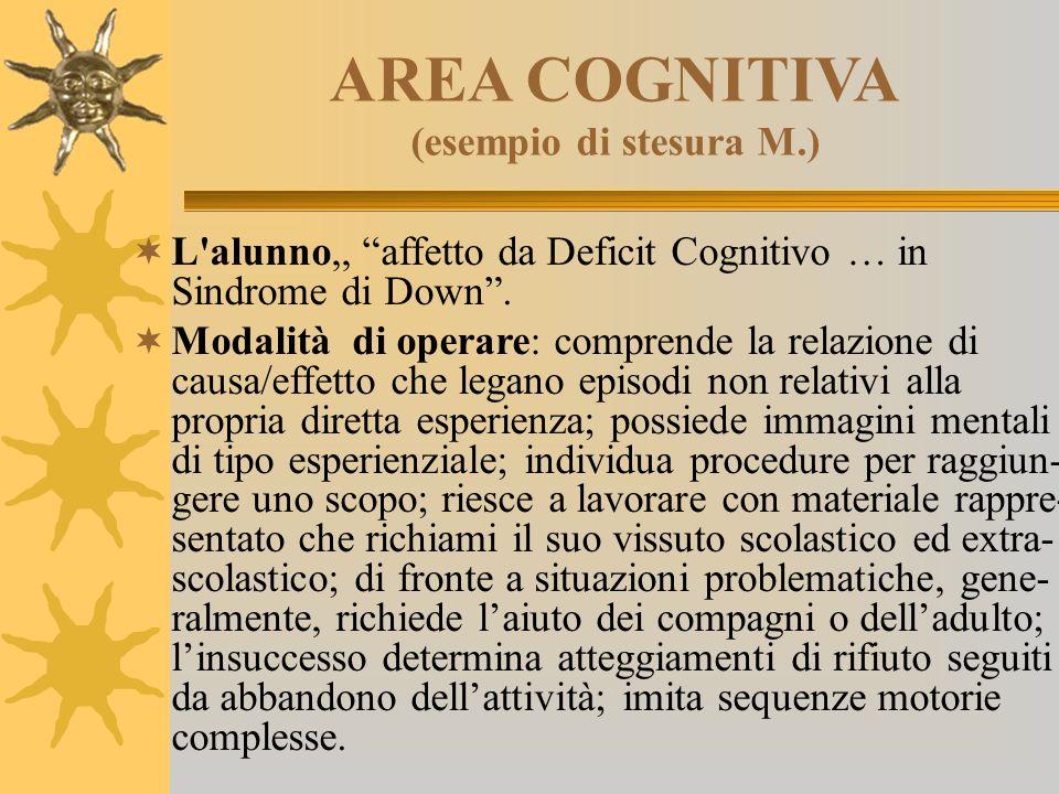 AREA COGNITIVA (esempio di stesura M.)