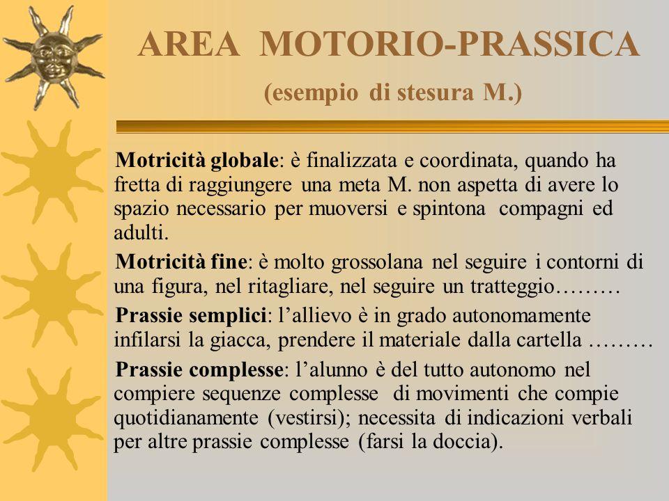 AREA MOTORIO-PRASSICA (esempio di stesura M.)