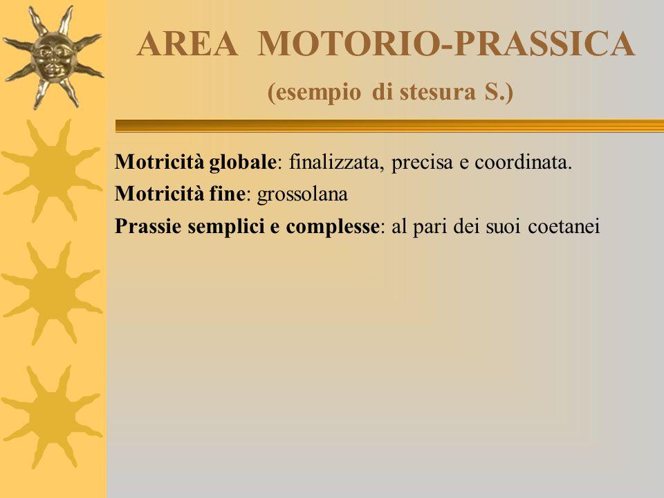 AREA MOTORIO-PRASSICA (esempio di stesura S.)