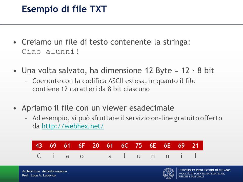 Esempio di file TXT Creiamo un file di testo contenente la stringa: Ciao alunni! Una volta salvato, ha dimensione 12 Byte = 12 · 8 bit.