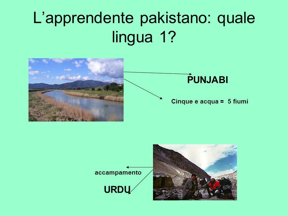 L'apprendente pakistano: quale lingua 1