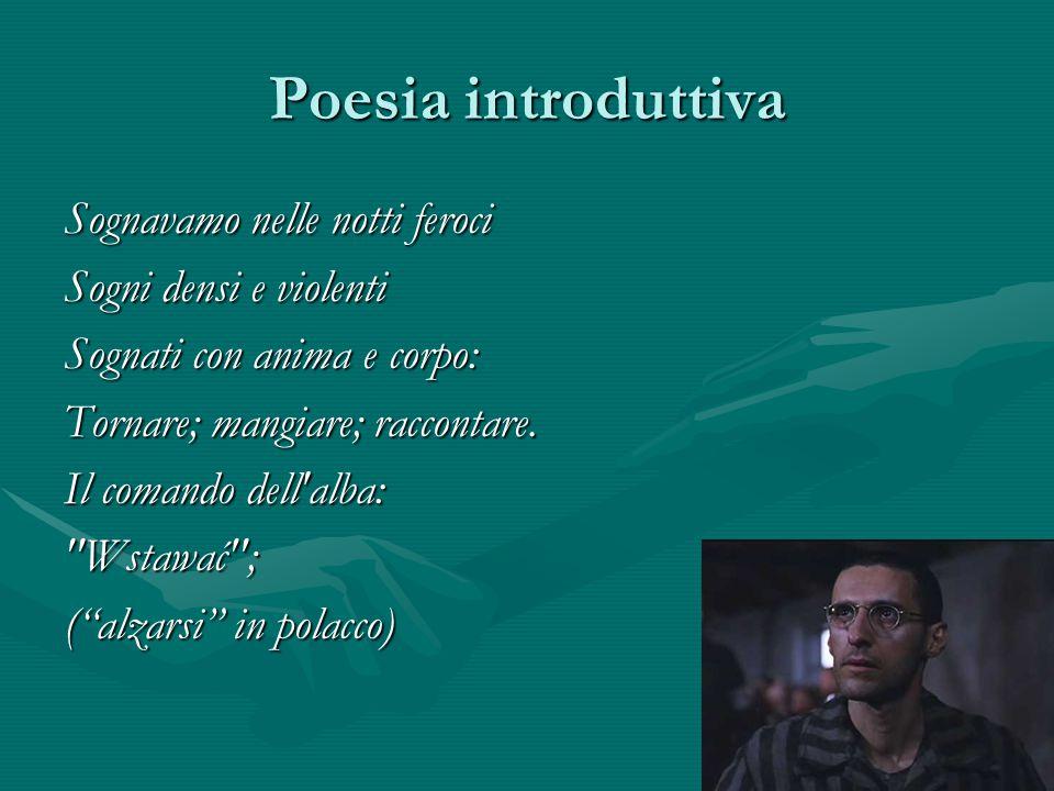 Poesia introduttiva Sognavamo nelle notti feroci