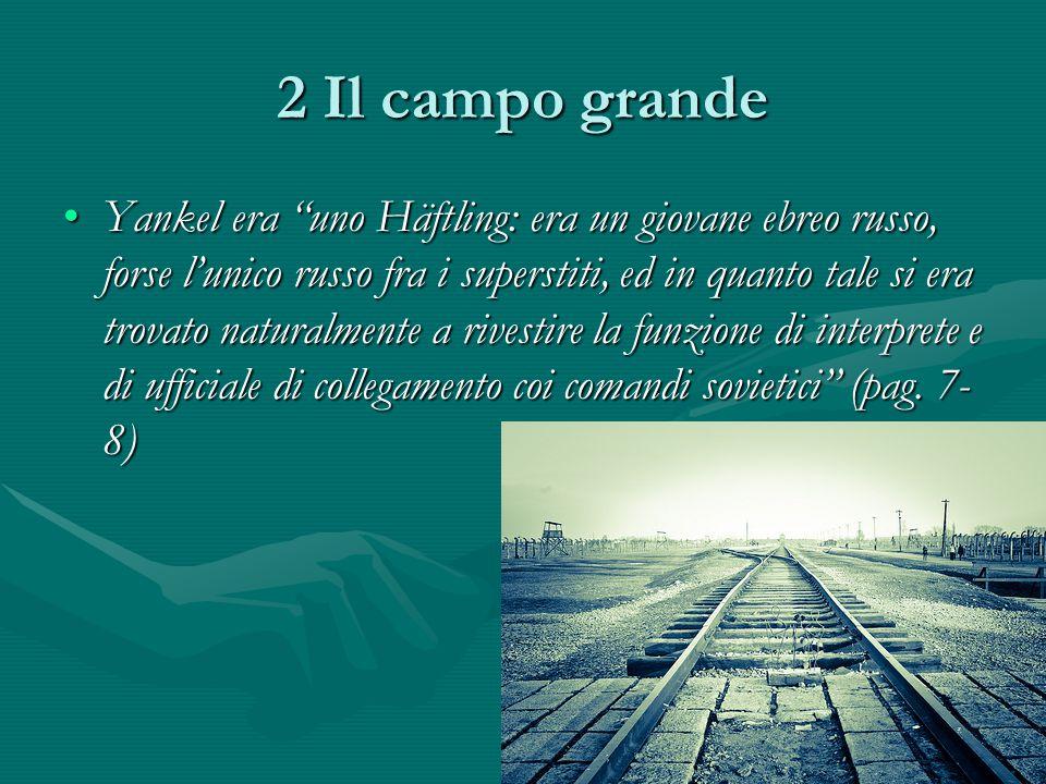2 Il campo grande